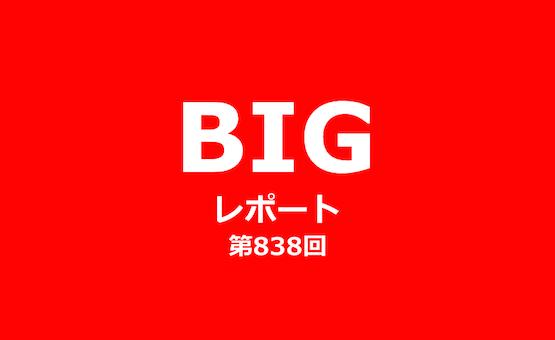 rpt-838